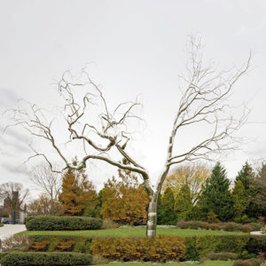 Large Metal Tree Sculpture